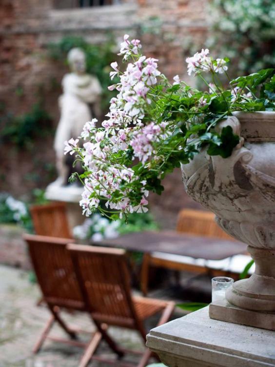 cima_rosa_garden.jpg