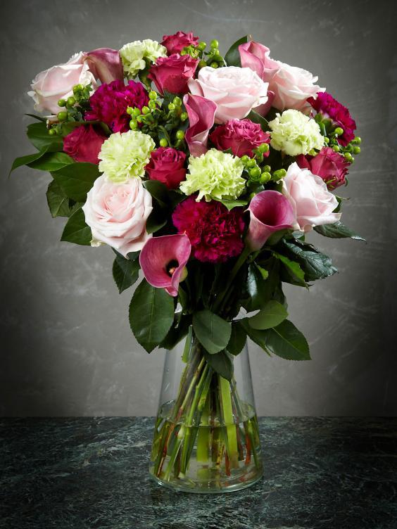 Charming-Mum-flowers.jpg