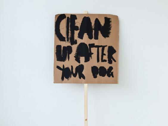 Clean-Up-After-Your-Dog-(2014),-Peter-Liversidge-with-Marion-Richardson-School,-London-(Classes-3H-and-3B)-(1).jpg