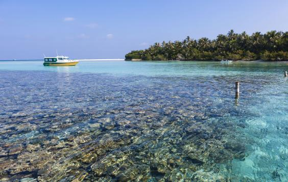 maldives-REX.jpg