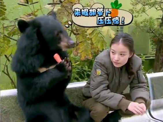pg-26-china-animals-2.jpg