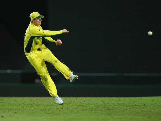 Australia vs india match report steve smith and mitchell johnson steve smith2g fandeluxe PDF