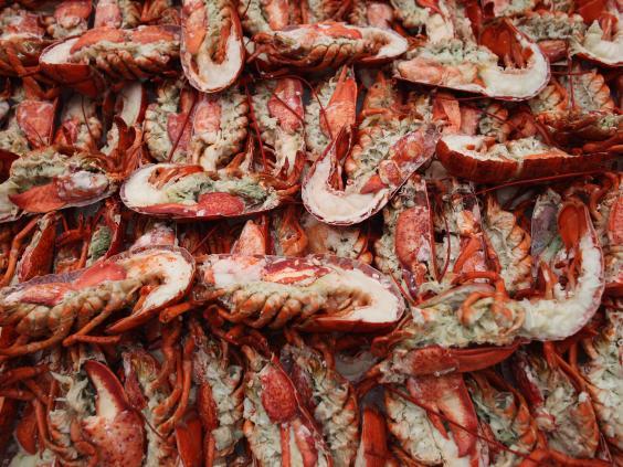 Lobster-2.jpg