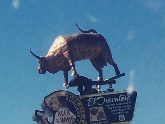 Barista's_bull.jpg