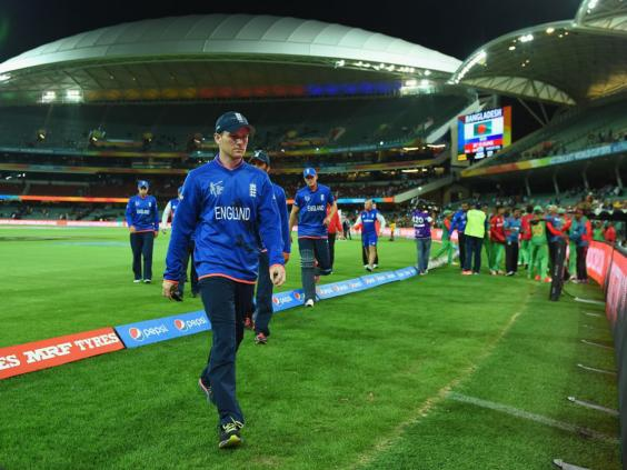56-Cricket2-Getty.jpg