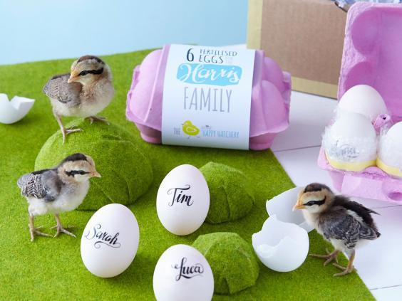 april-d-eggs.jpg
