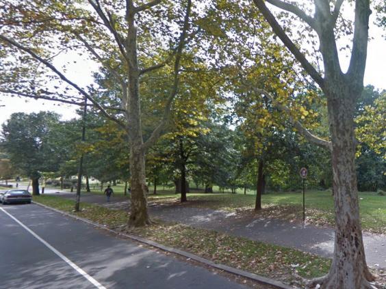 cobb-creek-wood-park-philadelphia.jpg