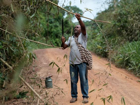amazon-rainforest-afp2.jpg