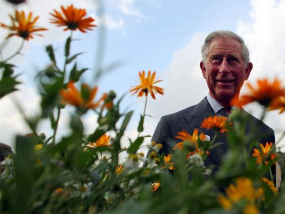 charles-plants-getty.jpg