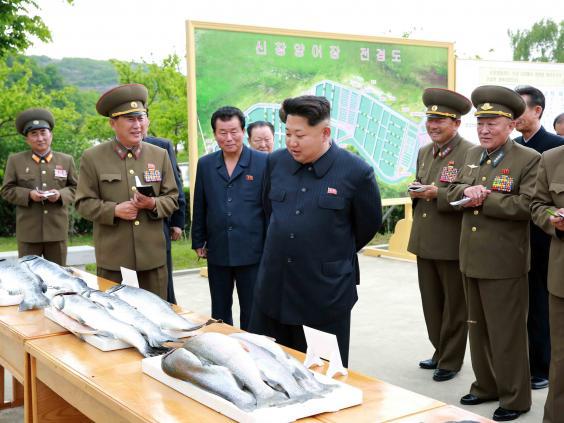 kim jong un fish rex.jpg