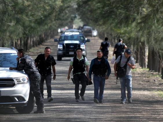 Michoacan-cartel.jpg