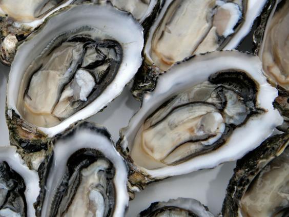 41-Oysters-Alamy.jpg