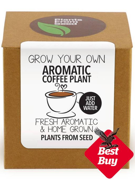 grow-your-own-coffee-plant.jpg