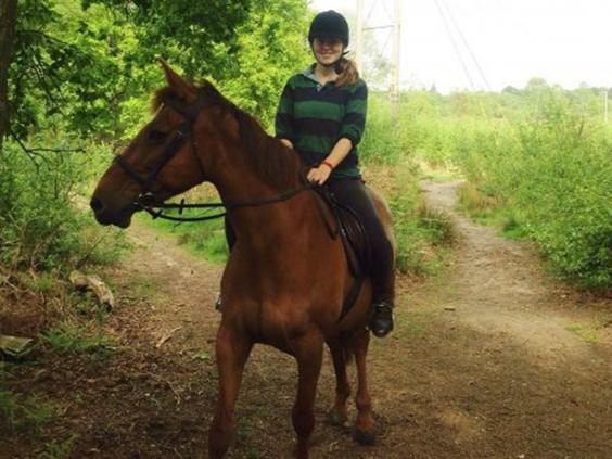 outdoors-horse.jpg