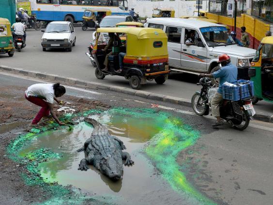 croc-india-afp2.jpg