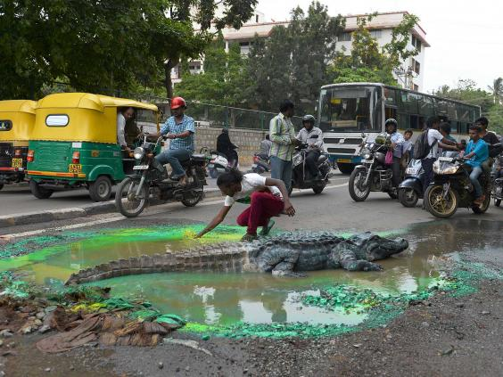 croc-india-afp3.jpg