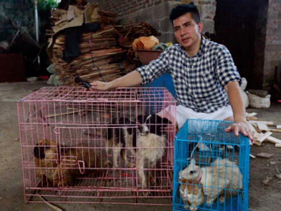 Saved-the-Yulin-4.jpg