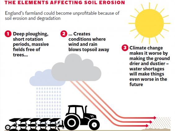 Soil-Erosion-Graphic.jpg