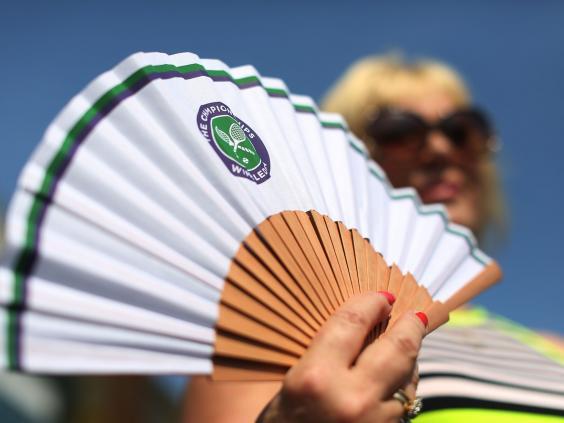 Fan-Wimbledon.jpg