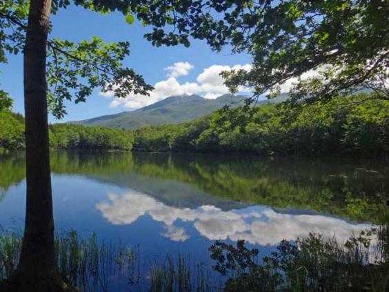 japan-lake.jpg