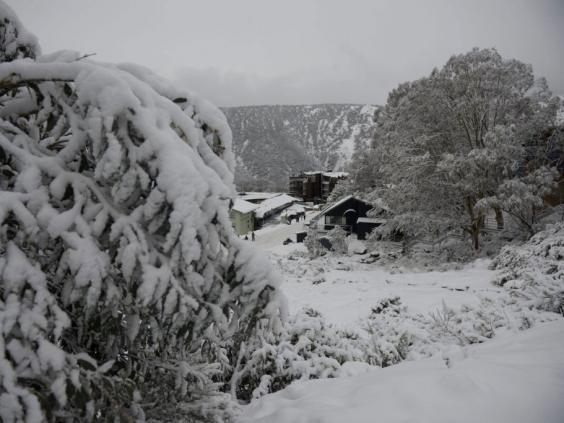 Australia-snow3_1.jpg