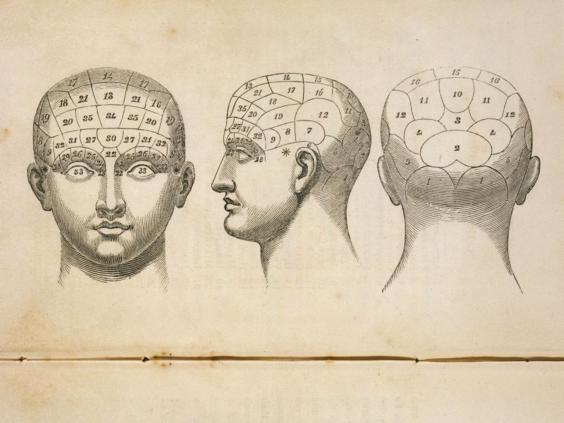 37-Phrenology-Alamy.jpg