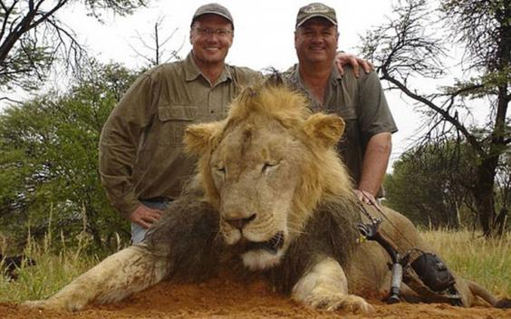2AE7E38F00000578-3177303-Walter_Palmer_left_from_Minnesota_is_believed_to_have_shot_and_k-a-20_1438092983979.jpg