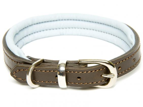 Dogs Horses Colours Leather.jpg