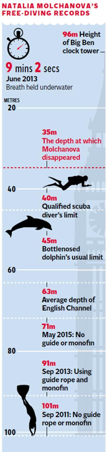 pg-8-free-diver-graphic-2.jpg
