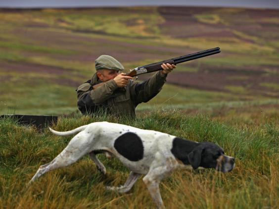 pg-10-grouse-hunting-3-getty.jpg