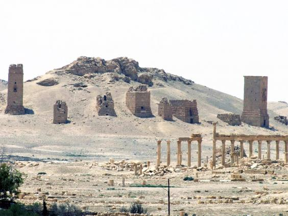 pg-22-Palmyra-2-ap.jpg