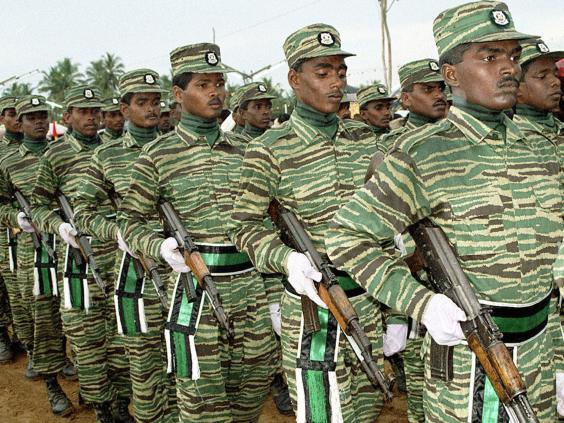 Tamil Tigers change their stripes: Former fighters become ...