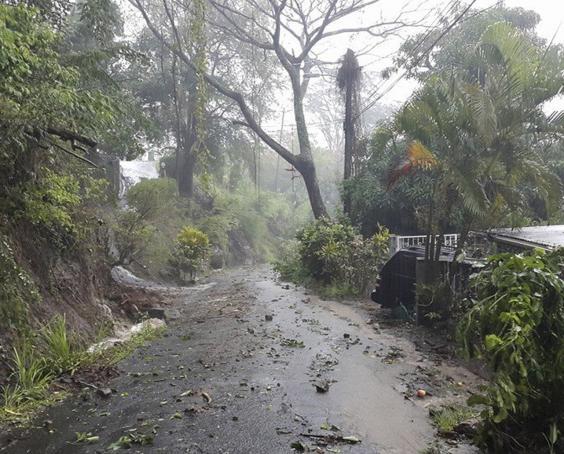 tropicalstorm3.jpg
