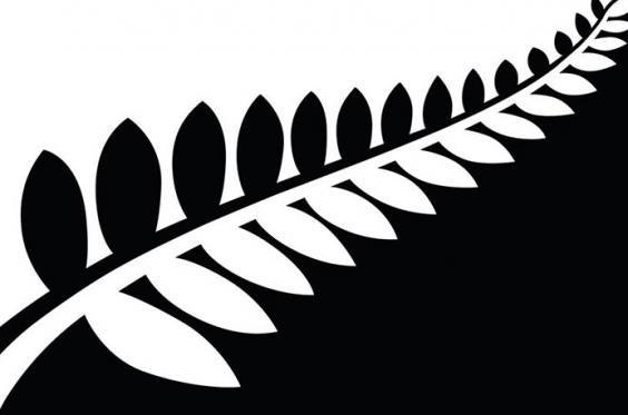 Black-and-white-fern-flat.jpg