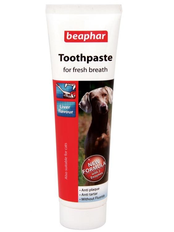 Best Natural Cat Toothpaste