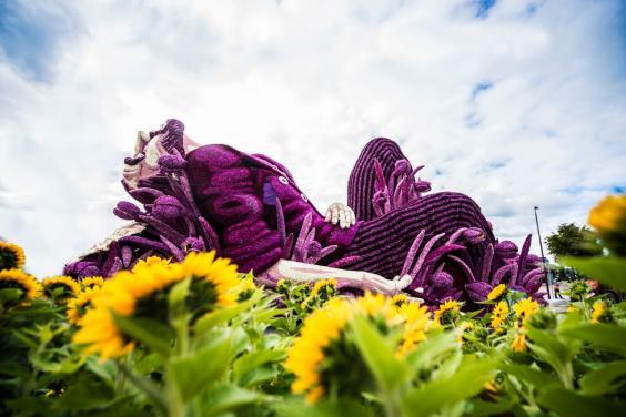 vg-flowers5.jpg