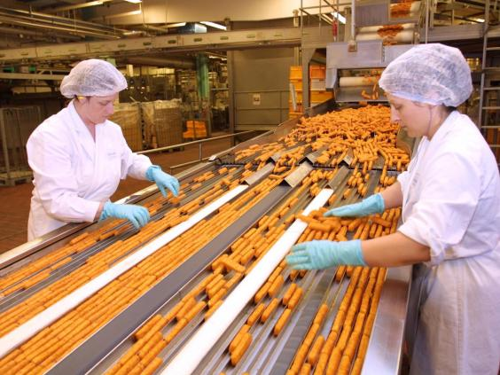29-fish-fingers-factory-rex.jpg