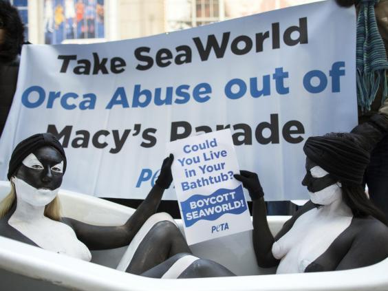 seaworld-protest.jpg