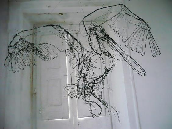 Portuguese artist makes wire animal sculptures that look for 3d wire art
