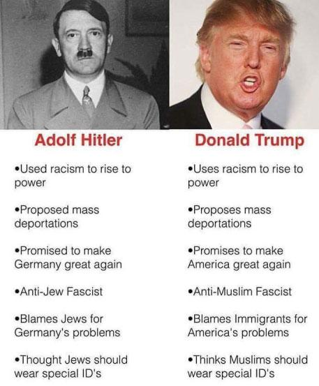 Image result for parallels between trump and hitler