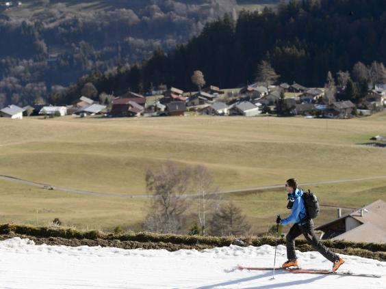 Swiss-Alps1.jpg