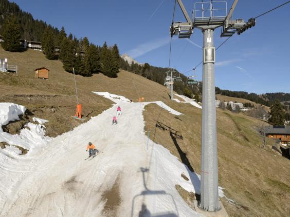 Swiss-Alps2.jpg