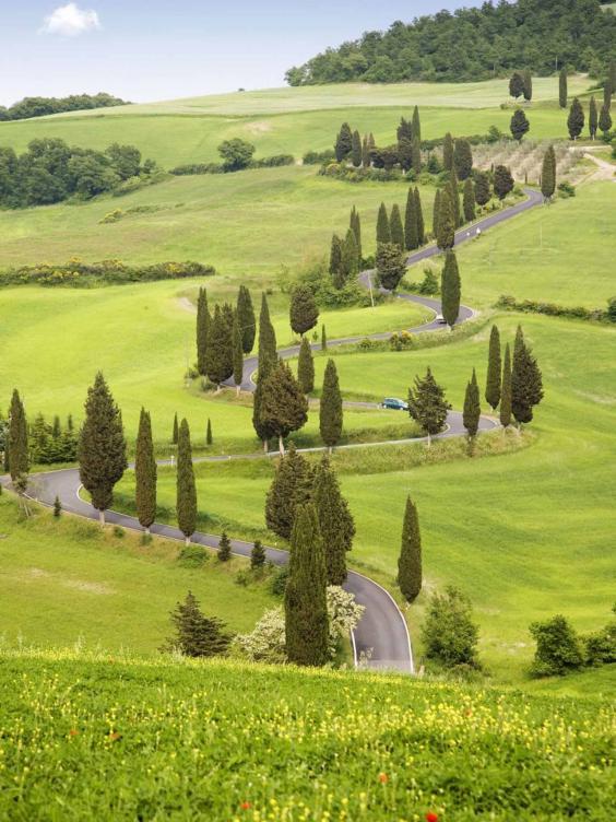 sport-tuscany-rex.jpg