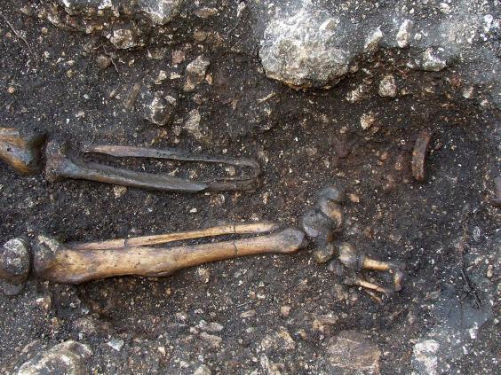 skeleton-austria-afp-getty2.jpg
