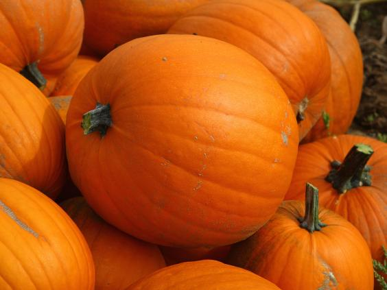 pumpkin-getty.jpg