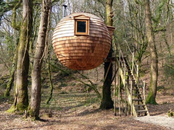 treehouse-cornwall.jpg
