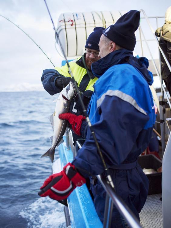 Cod-fishing-Joe-Woodhouse.jpg