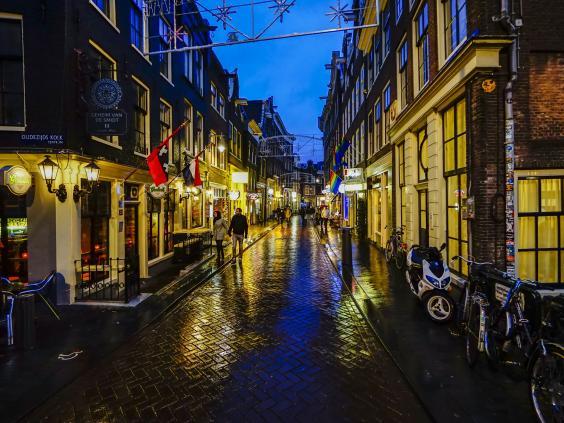 Amsterdam-Rex.jpg