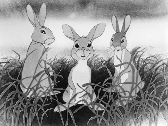 pg-39-animal-stories-3-getty.jpg