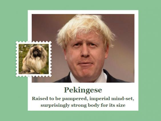 boris_johnson_dog.jpg